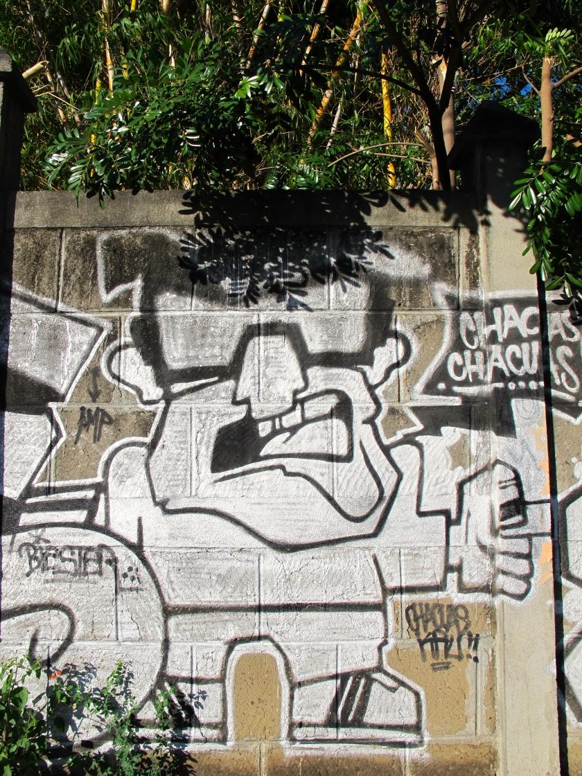 More great Graffiti in Mangua